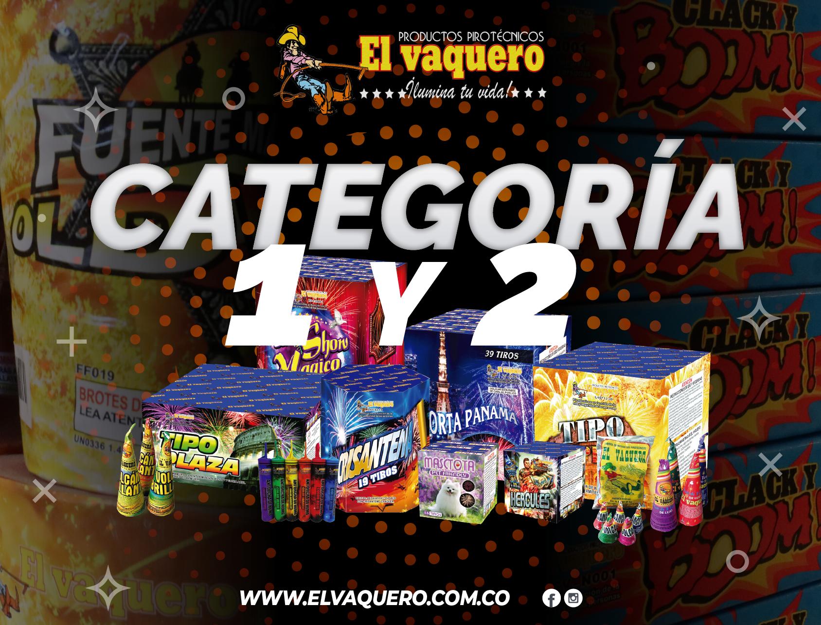 CATEGORIA 1 - 2