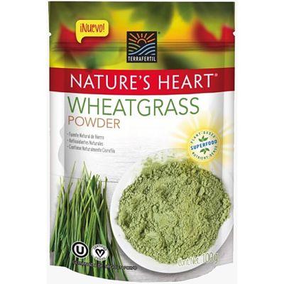 Pasto Germinado - Wheatgrass